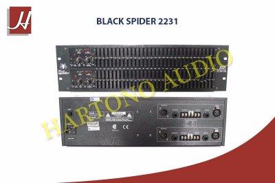 black spider 2231