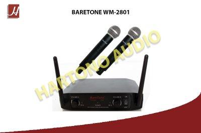WEB WM2801