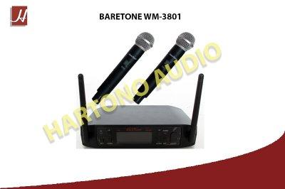 WEB WM3801