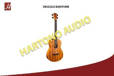 UKULELE BARITONE