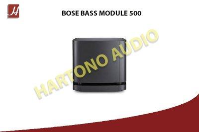 BASS MODULE 500